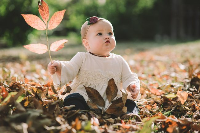 Guelph Fall Family Photographer